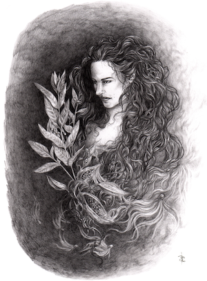 Image of E.A. Petricone. Graphite drawing of woman with long, dark curly hair beside milkweed plants and fluff.